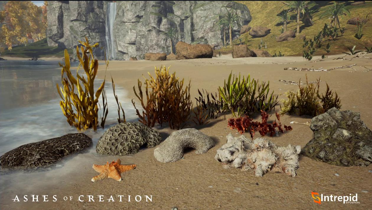 follaje coral recolectable herboristeria herbalism ashes of creation en español